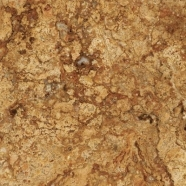 T109 Vango Gold Travertine